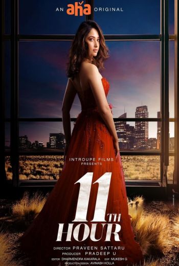 11th Hour Poster