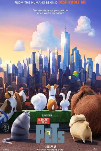 The Secret Life of Pets Poster