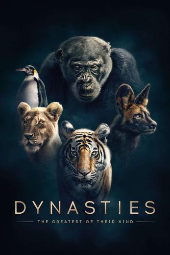 Dynasties Poster